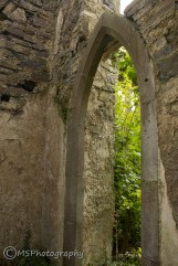 Delvin - St Mary's Church - (C) Marta Stoklosa
